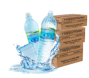 HappyWater Single Server Water Delivery