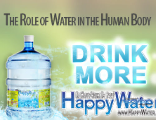 The Role of Water in the Human Body