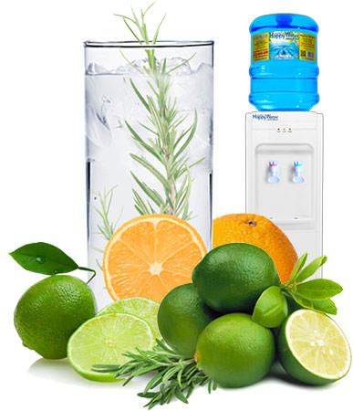 Exiting HappyWater Rosemary Citrus Infusion